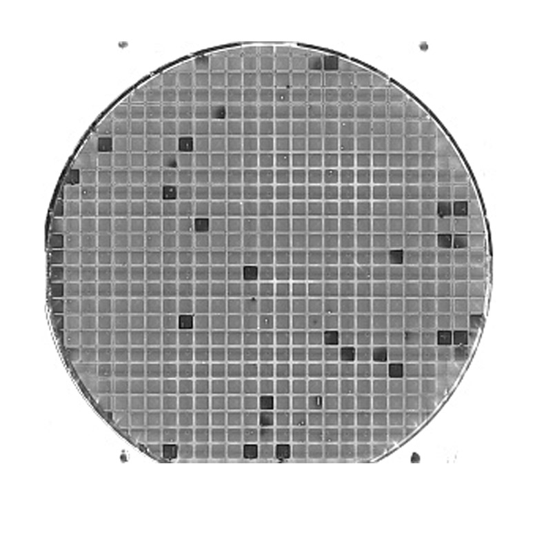 Processed wafer